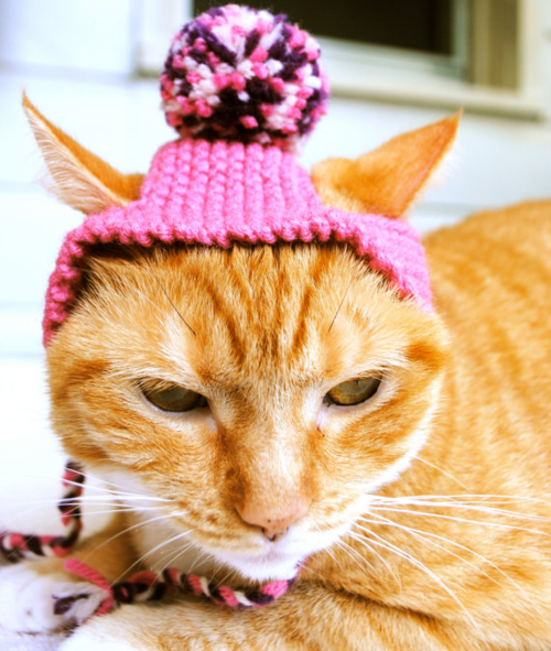Style-Save-Us-Pink-Hat