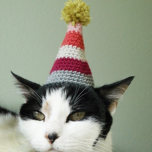 Style-Save-Us-Pointy-Hat
