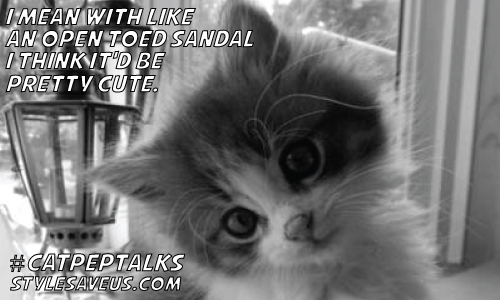 Cat Pep Talks: Try It With Sandals