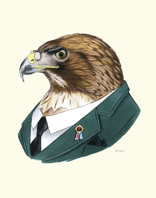 style-save-us-hawk-in-suit