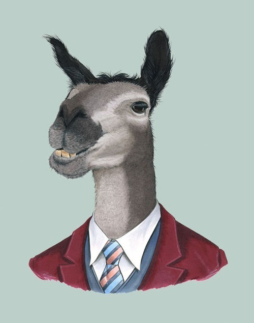 style-save-us-llama-in-suit