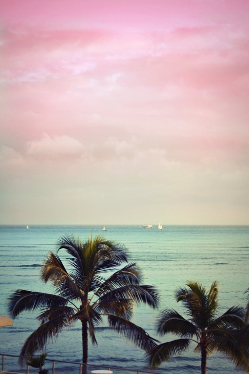 style-save-us-pink-sky
