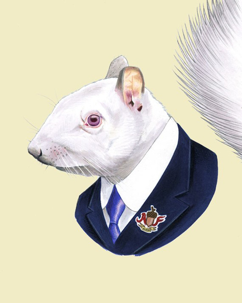 style-save-us-white-squirrel-in-suit